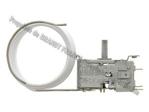 Thermostat  a110051/b294